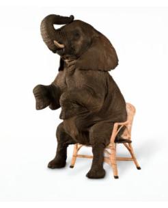 Are You A Rhinoceros Or An Elephant?